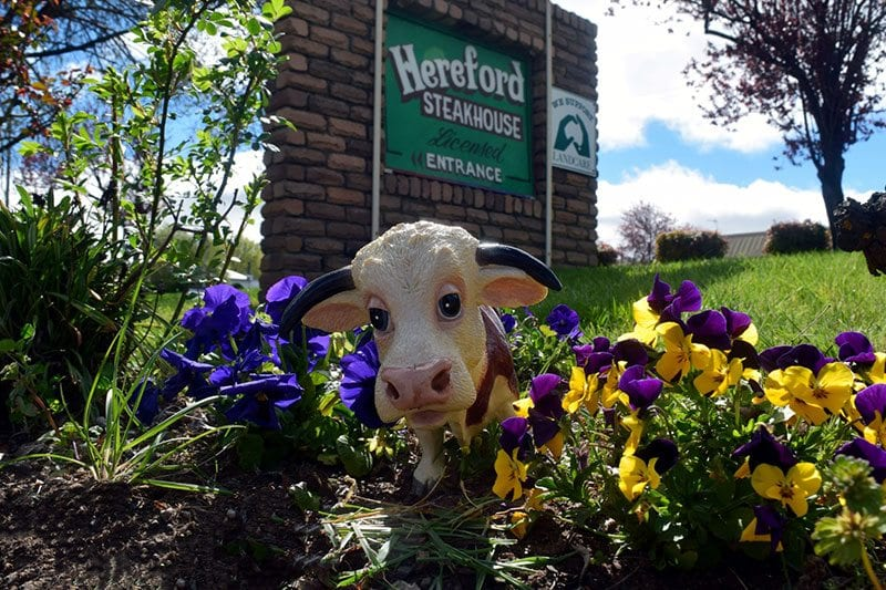 Ferdi outside Hereford Steakhouse