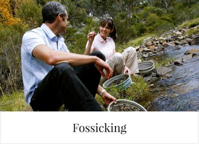 Fossicking in Glen Innes Highlands